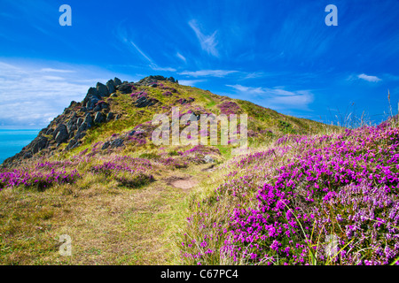 Morte Point near Morthoe, Woolacombe with a view over the Bristol Channel, North Devon, England, UK - Stock Photo
