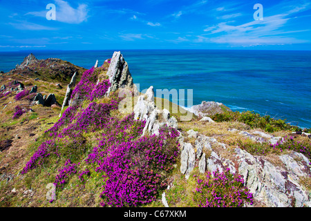 Morte Point near Morthoe, Woolacombe with a view over the Bristol Channel and Lundy Island, North Devon, England, - Stock Photo