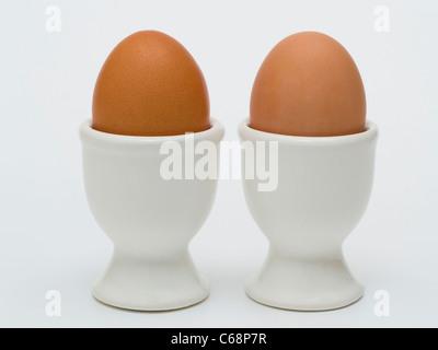 zwei braunes Hühnereier stehen in Eierbechern | two eggcups with two brown hen's eggs - Stock Photo