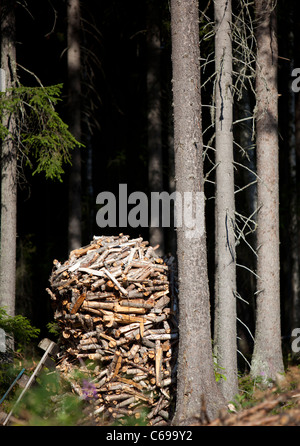 Pile of packaged firewood in the forest , Finland - Stock Photo