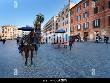 Horse drawn carriages in Piazza Di Spagna await the first tourists of the day. - Stock Photo
