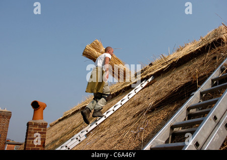 Thatchers Greg Shoesmith and John Hall working on the roof of the Tudor Close pub in Ferring near Worthing UK - Stock Photo