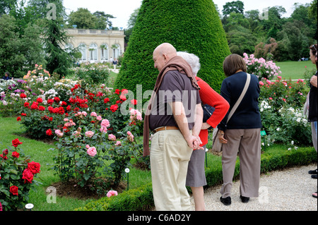 Bagatelle Park, Paris, France, Caucasian senior couple looking at roses at garden - Stock Photo