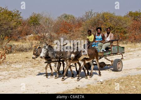 Herero family on donkey cart, Damaraland, Namibia - Stock Photo