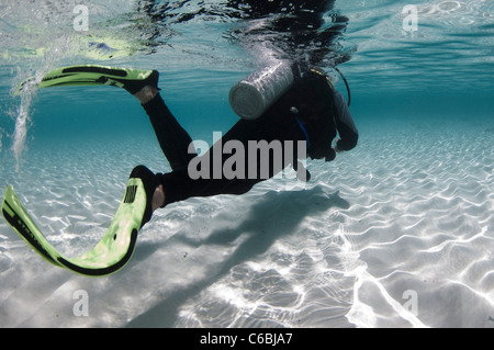 Scuba diver in clear waters in the shallows, profile, North Huvadhoo Atoll, The Maldives - Stock Photo