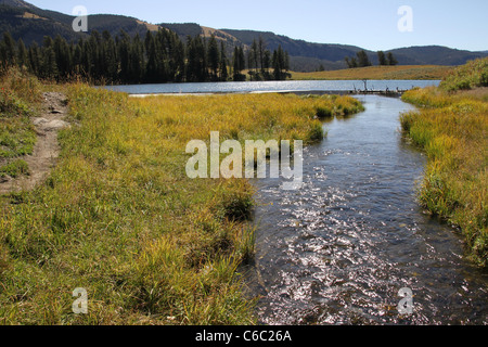 Trout Lake, Yellowstone National Park - Stock Photo