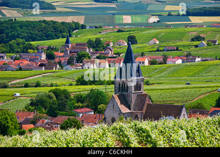 France, Marne, Villedomange, a village close to Reims associated with Champagne wine - Stock Photo