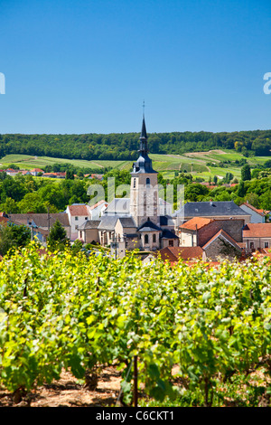 France, Marne, Sermiers, a village close to Reims associated with Champagne wine - Stock Photo
