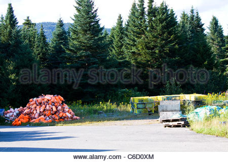 Lobster buoys and yellow lobster cages in Bay of Fundy,New Brunswick, Canada - Stock Photo