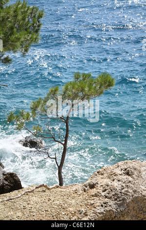 croatian beach - Stock Photo
