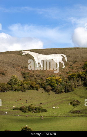 The White Horse at Westbury - Stock Photo