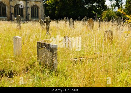 Gravestones in an overgrown graveyard - Stock Photo