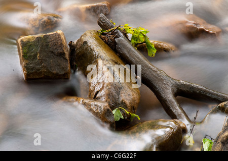 A stick and rocks in the River Swale at Keld, Swaledale North Yorkshire England UK - Stock Photo