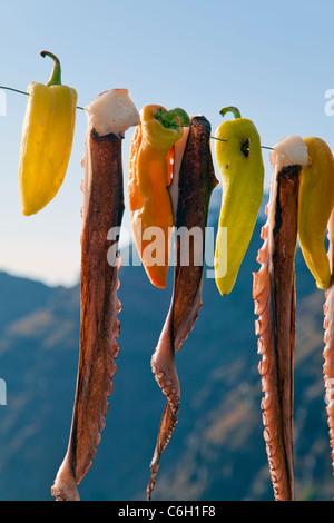 Octopus (ohtapodi) drying outside a restaurant in Fira, Santorini (Thira), Cyclades Islands, Aegean Sea, Greece, - Stock Photo