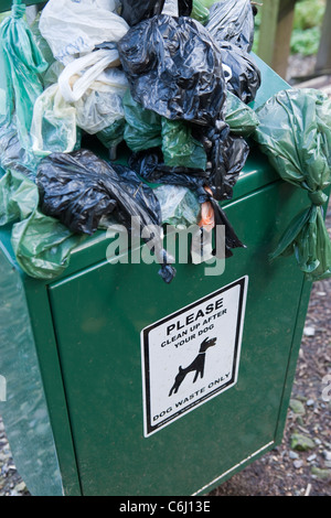 Overflowing Dog waste bin on footpath waste - Stock Photo