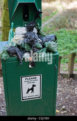 Overflowing Dog waste bin on footpath - Stock Photo