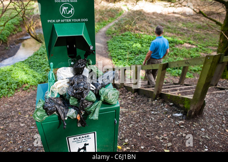 Overflowing Dog waste bin on footpath walker going down steps - Stock Photo