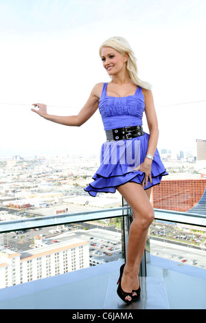 Holly Madison 3rd Annual 'Smokin' Hot Bachelorette Auction' benefitting the Nevada Partnership For Homeless Youth - Stock Photo