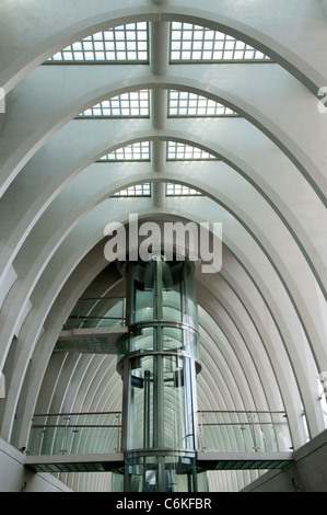 Liège-Guillemins modern railway station designed by architect Santiago Calatrava in Liege Belgium - Stock Photo