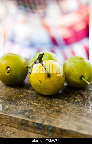 Greengage plums - Stock Photo