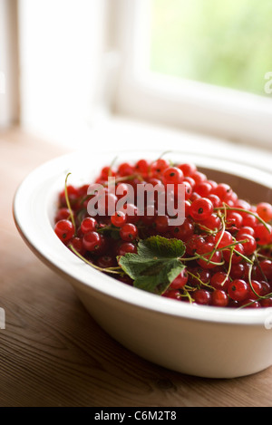 Red currants in bowl - Stock Photo
