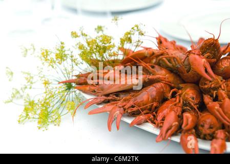 Boiled crawfish - Stock Photo