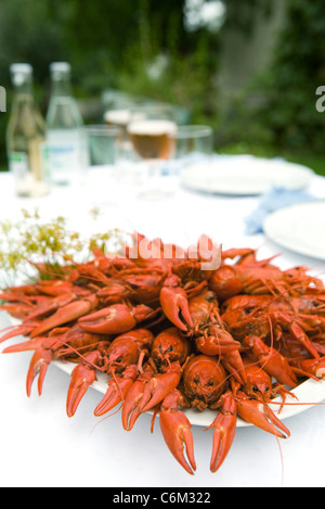 Boiled crawfish on outdoor dinner table - Stock Photo
