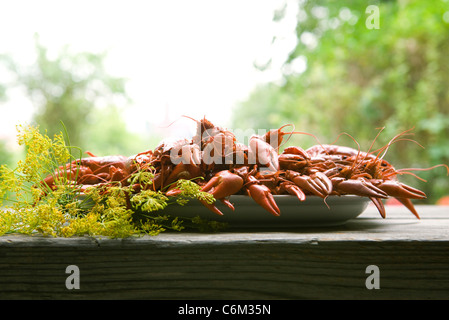 Boiled crawfish on outdoor table - Stock Photo