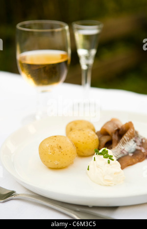 New potatoes with pickled herring and sour cream - Stock Photo
