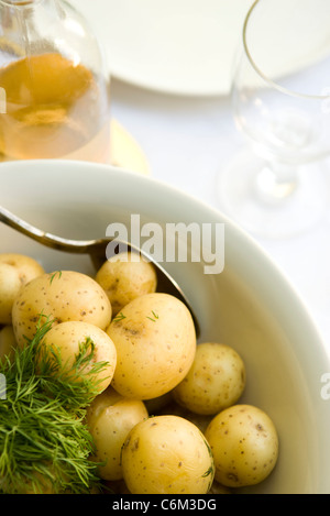 New potatoes with dill - Stock Photo