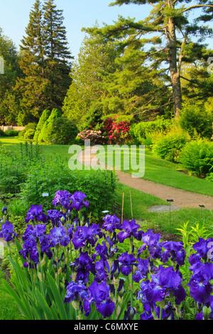 Thuya Gardens, Northeast Harbor, Mount Desert Island, Maine, USA - Stock Photo