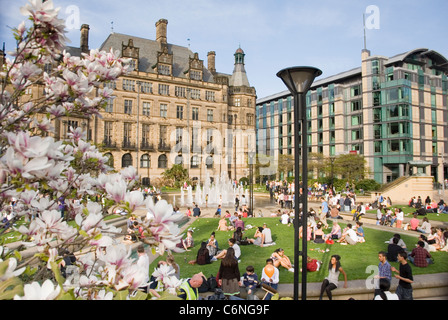 Town Hall & Mercure Hotel from Peace Gardens, with Street Lamp & Magnolia Tree Blossom, Sheffield City Centre, UK - Stock Photo