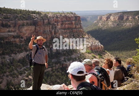 The Long House cliff dwelling at Mesa Verde National Park - Stock Photo