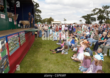 Spectators watch 'The Sheep Show' at the Bucks County Show 2011. - Stock Photo