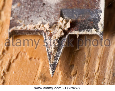 Drill bit - Stock Photo