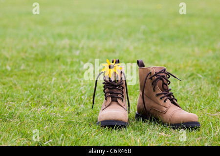 Rudbeckia hirta in a pair of leather boots. - Stock Photo