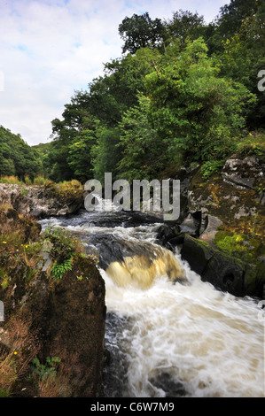The River Afon Teifi near Cenarth Bridge forming the border between Carmarthenshire and Ceredigion in West Wales - Stock Photo