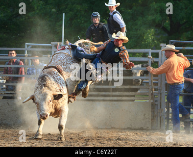 Cowboy Being Thrown While Bull Riding Water Valley Rodeo