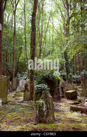 Highgate Cemetery Gravestones in dense woods - Stock Photo