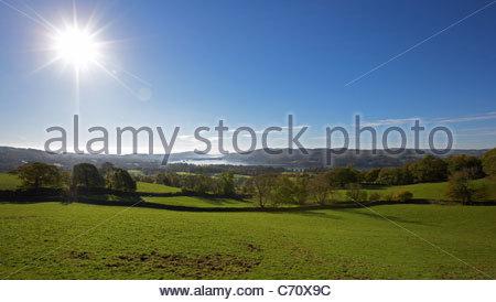 Grassy field against blue sky - Stock Photo