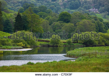 River flowing through grassy field - Stock Photo