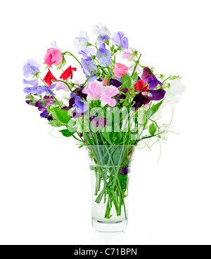 Bouquet of colorful sweet pea flowers in glass vase - Stock Photo
