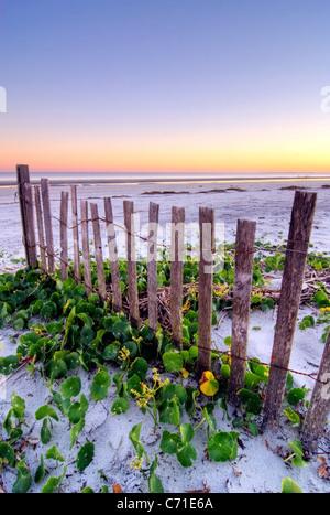 A wooden beach fence at sunset on Hilton Head Island, South Carolina. - Stock Photo