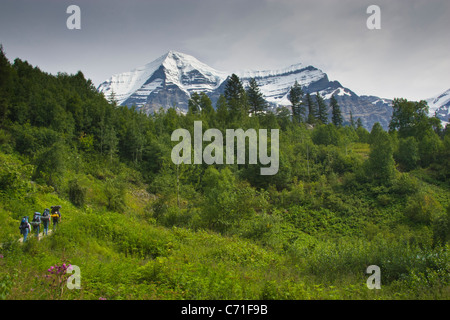 Hikers going up to base of Mount Robson, the tallest peak in the Canadian Rockies. - Stock Photo