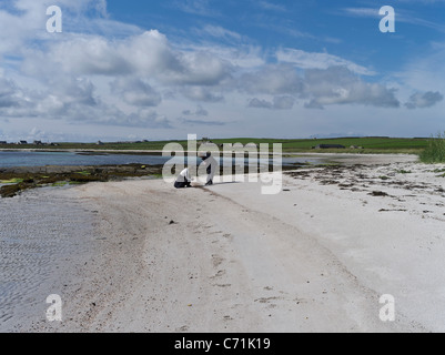 dh South Wick PAPA WESTRAY ORKNEY Scottish Tourists picking shells from white sandy beach people Scotland - Stock Photo