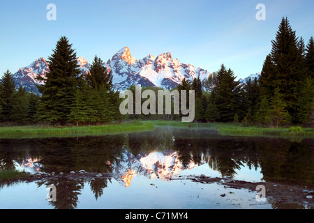 The Tetons reflect in Schwabacher's Landing in Grand Teton National Park, Wyoming. - Stock Photo