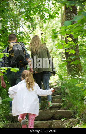 Family hiking in woods, rear view - Stock Photo