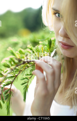 Young woman holding pine needle branch, cropped - Stock Photo