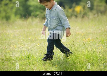Little boy walking in field - Stock Photo