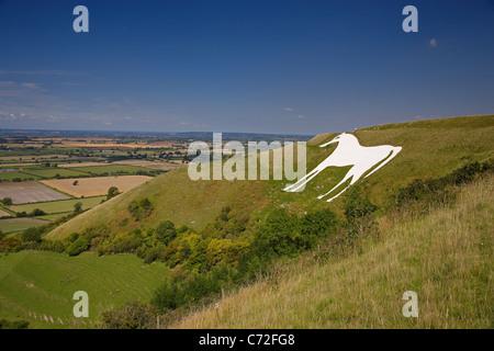 White Horse, Westbury, Wiltshire, England, UK - Stock Photo